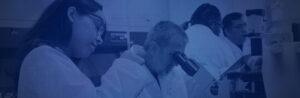 Bio Jobs Hub Training